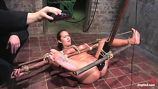 Trina Michaels in Tongue Tied & Tit Tormented Trina Michaels - HogTied