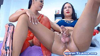 Closed Up blowjob From Tranny Duo